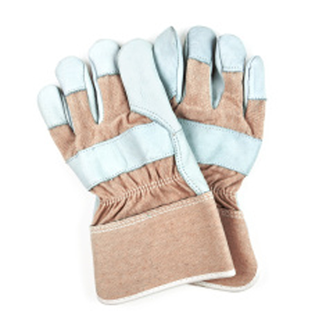 Gloves / All Catagories